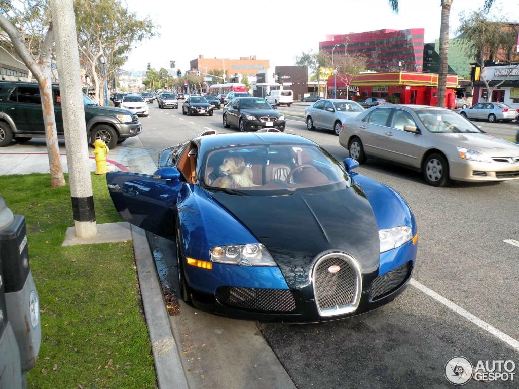 Bugatti Veyron 16.4 2