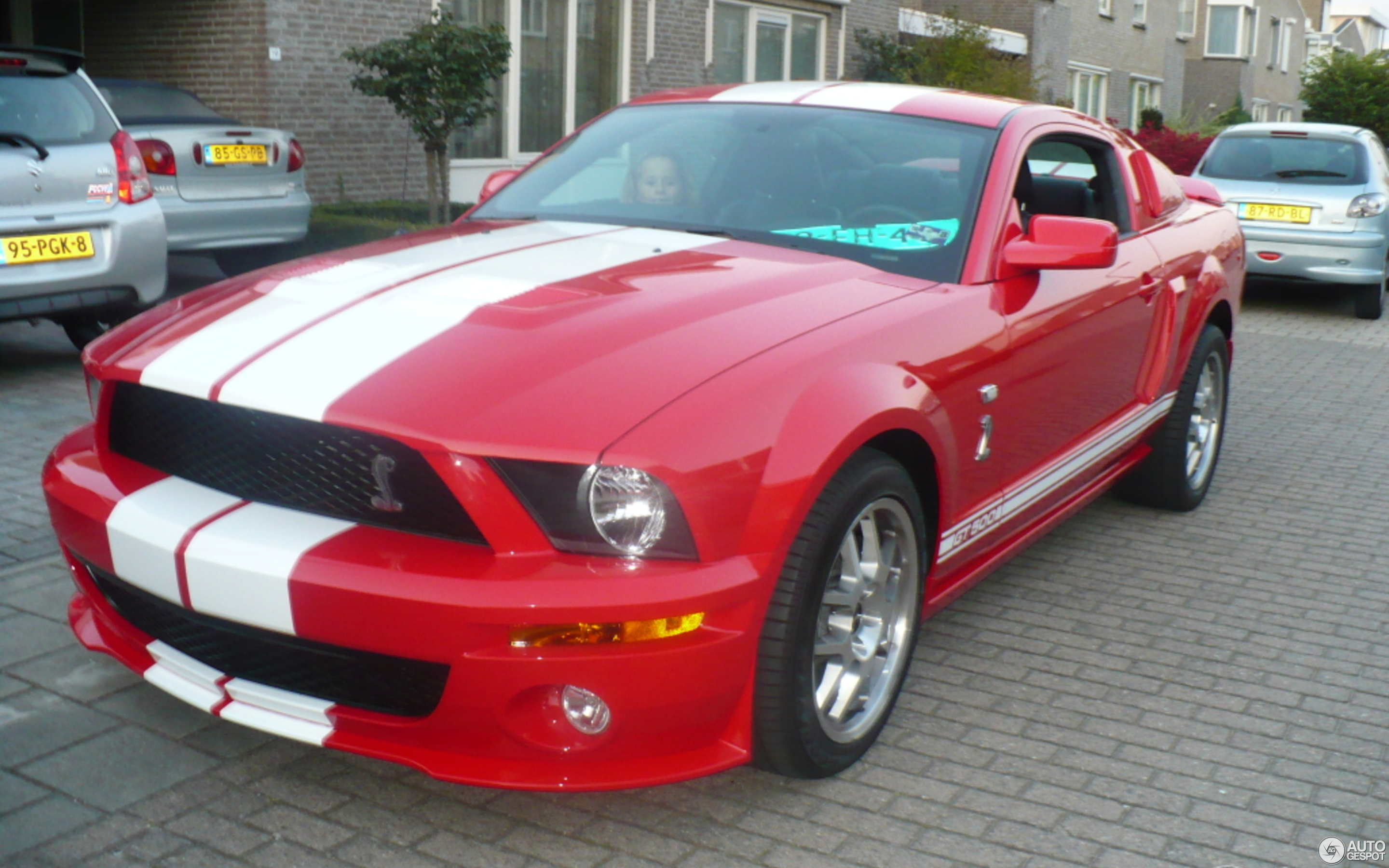 Ford Mustang Shelby GT500 27 January 2012 Autogespot